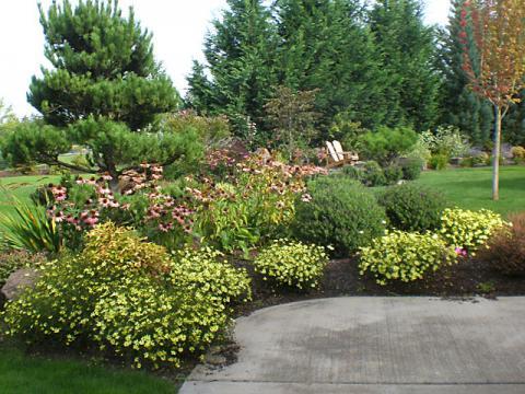 - Portland Oregon Landscaping Planting Services