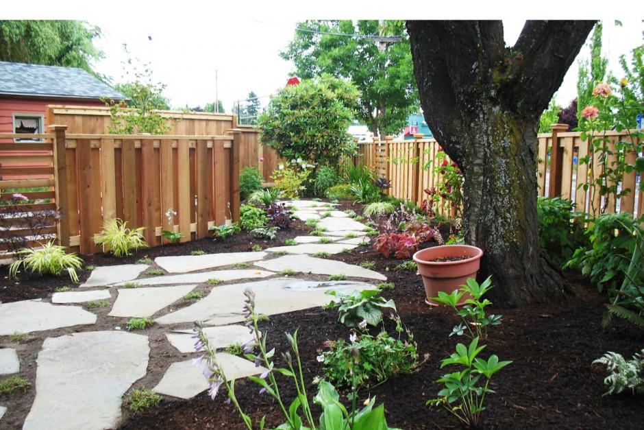 Are You Dreaming of a Lawn-free Landscape?