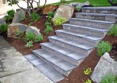 Steps-VanVleet-1