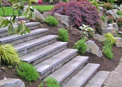 Steps-VanVleet-2